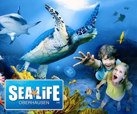 Sea Life Gutscheine Mit 45 Rabatt Dealgottde