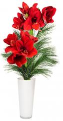 image thumb Blumenarrangement mit roten Amaryllis für 11,90€