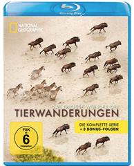 image88 National Geographic   Das große Wunder der Tierwanderungen Box (2 Blu rays) für 5,99€