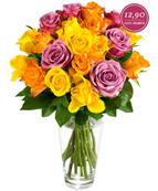 Bild zu Miflora: 20 bunte Rosen für 18,80€ inklusive Versand