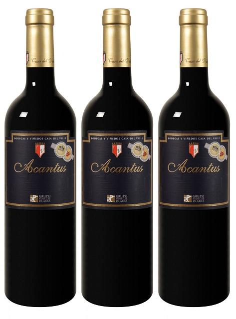 Bild zu Der Weinversand: 12 Flaschen prämierter Bodegas y Viñedos Casa del Valle Acantus für 46,83€ inkl. Versand