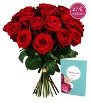 Bild zu Miflora: 20 Red Naomi Rosen (50cm Stiele) für 17,90€