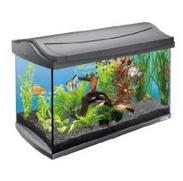 Bild zu Amazon Tagesangebot: Alles fürs Aquarium von Tetra mit guten Preisen