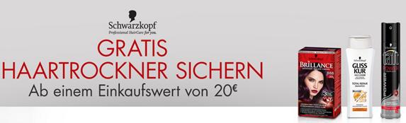 Bild zu [Top] Gratis Grundig Haartrockner HD6080 (Wert 19,99€) beim Einkauf von Schwarzkopf-Produkten im Wert von 20€