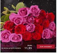 """Bild zu Miflora: Blumenstrauß """"Lovely Rose"""" mit 20 rosa & roten Rosen für 16,90€"""