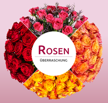 Bild zu Miflora: Rosenüberraschung mit 40 Rosen (~50cm Stiellänge) für 22,90€
