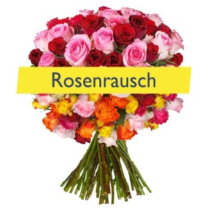 rosenrausch2_1