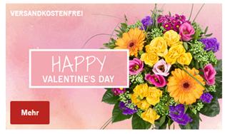 Bild zu Frühbestellerrabatt: 20% Rabatt bei Lidl Blumen + keine Versandkosten