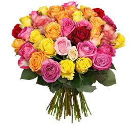 """Bild zu 28 Rosen bunte Rosen """"Million Stars"""" für 19,94€ inklusive Versand"""
