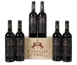 Bild zu Weinvorteil: 6 Flaschen Caballo d'Oro – Valdepeñas DO Gran Reserva in Holzkiste für 35,94€