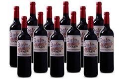 Bild zu Weinvorteil: Mehrfach prämiertes 12er-Paket Casa del Valle – El Tidón Tempranillo-Cabernet Sauvignon – VdT Castilla für 49,92€ inkl. Versand