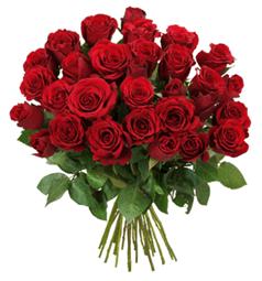 Bild zu Blume Ideal: Blumenstrauß mit 44 roten Rosen (50cm Stiellänge) für 23,98€