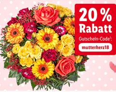 Bild zu 20% Rabatt (ab 24,99€ Bestellwert) bei Lidl Blumen + keine Versandkosten