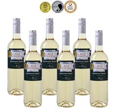 Bild zu Weinvorteil: 6 Flaschen Calle Principal – Sauvignon Blanc für 19,98€