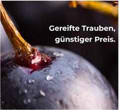 Bild zu Weinvorteil: bis zu 20€ Rabatt für Neukunden (abhängig vom Bestellwert)