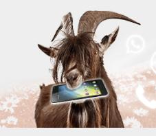 Bild zu [bis Montag 7 Uhr] 1GB Datenflat + 100 Freiminuten im Vodafone-Netz für 2,99€/Monat