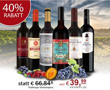 Bild zu ebrosia: Spanisches Probepaket mit 6 Flaschen Rotwein für 34,94€