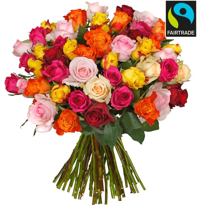 Bild zu Blume Ideal: 47 bunte Rosen für 24,98€ inkl. Versand