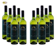 Bild zu Weinvorteil: 12 Flaschen Caballo de Oro – Verdejo 'Edicion Limitada' – Rueda DO für 59,88€