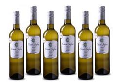 Bild zu Weinvorteil: 6 Flaschen Casa Safra – Verdejo–Castilla für 29,89€