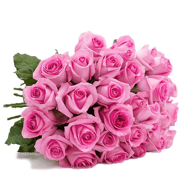 """Bild zu Blume Ideal: Blumenstrauß """"Pink Diamonds"""" mit 33 Rosen für 20,98€"""