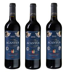 Bild zu Weinvorteil: 12 Flaschen des mehrfach prämierten Bodegas y Viñedos Casa del Valle – Acantus Cabernet Sauvignon-Tempranillo für 39,99€