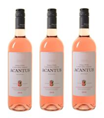 Bild zu Weinvorteil: 12 Flaschen Bodegas y Viñedos Casa del Valle – Acantus Rosado für 39,99€