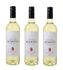 Bild zu Weinvorteil: 6 Flaschen des mehrfach prämierten Acantus Sauvignon Blanc aus Spanien von 2018 für 31,89€