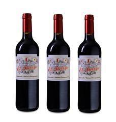 Bild zu Weinvorteil: 18 Flaschen Casa del Valle – El Tidón Tempranillo-Cabernet Sauvignon – VdT Castilla für 59,72€