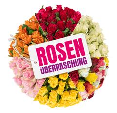 Bild zu Blume Ideal: Rosenüberraschung mit 40 Rosen (50cm Stiellänge) für 24,98€