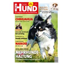 """Bild zu 2 Ausgaben der Zeitschrift """"Der Hund"""" kostenlos lesen – Kündigung notwendig"""