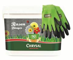 Bild zu Chrysal Rasendünger Jubiläum 5 kg inkl. Gartenhandschuhe für 13,99€ (Vergleich: 20,80€)