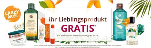Bild zu [Super] Yves Rocher: das erste Produkt im Warenkorb gibt es gratis + kostenloser Versand ab 20€ + 10€ Rabatt ab 40€ oder 15% ab 45€