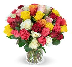 """Bild zu Blume Ideal: Blumenstrauß """"CRAZY IN LOVE"""" mit 40 bunten Rosen für 24,98€"""