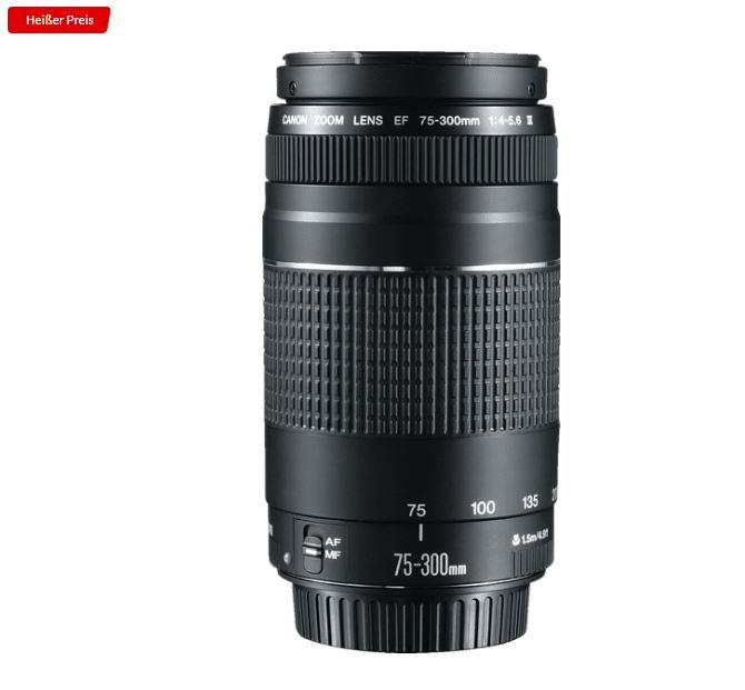 Bild zu CANON EF III 75 mm – 300 mm f/4-5.6 EF Objektiv für 96,51€ (VG: 145€)