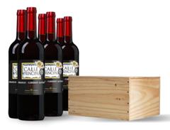 Bild zu Weinvorteil: 6 Flaschen Calle Principal (2019) in edler Holzkiste für 29,99€ (beim Kauf von zwei Kisten 49,99€) zzgl. Versand