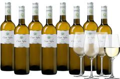 Weinpaket Casa Safra Verdejo, 8 Flaschen 4 Gläser
