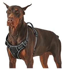 Bild zu Lesure Hunde Geschirr verstellbar ab 7,99€